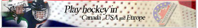 Play hockey overseas in Canada and Europe